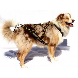 Bikejöring Hundegeschirr X-Back-Zuggeschirr Größe L